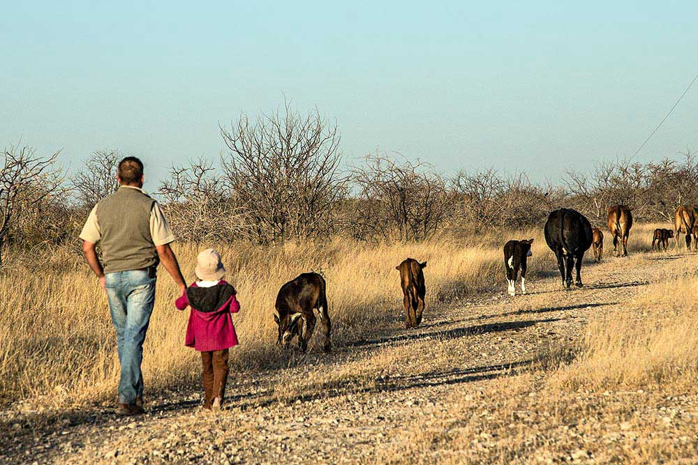 Danie on a farm walk - What to do in Namibia - Activities in Namibia - Vreugde Guest Farm